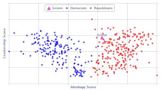 Michael Grimm - politické score